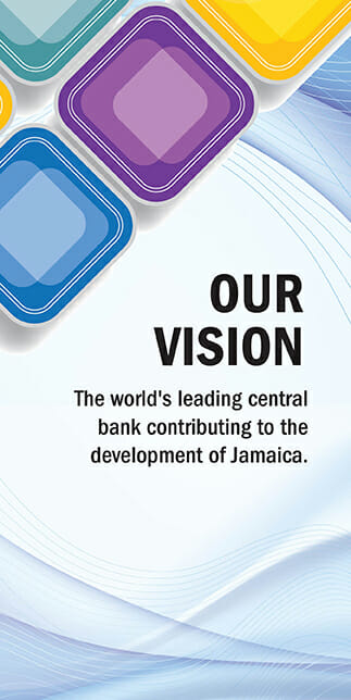 Our Vision-323x644